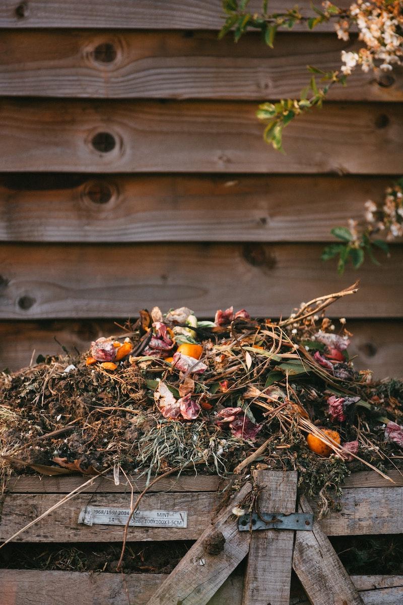 compost amendement naturel