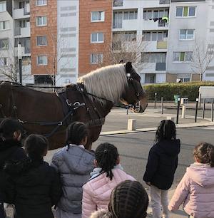 Collecte à cheval 93